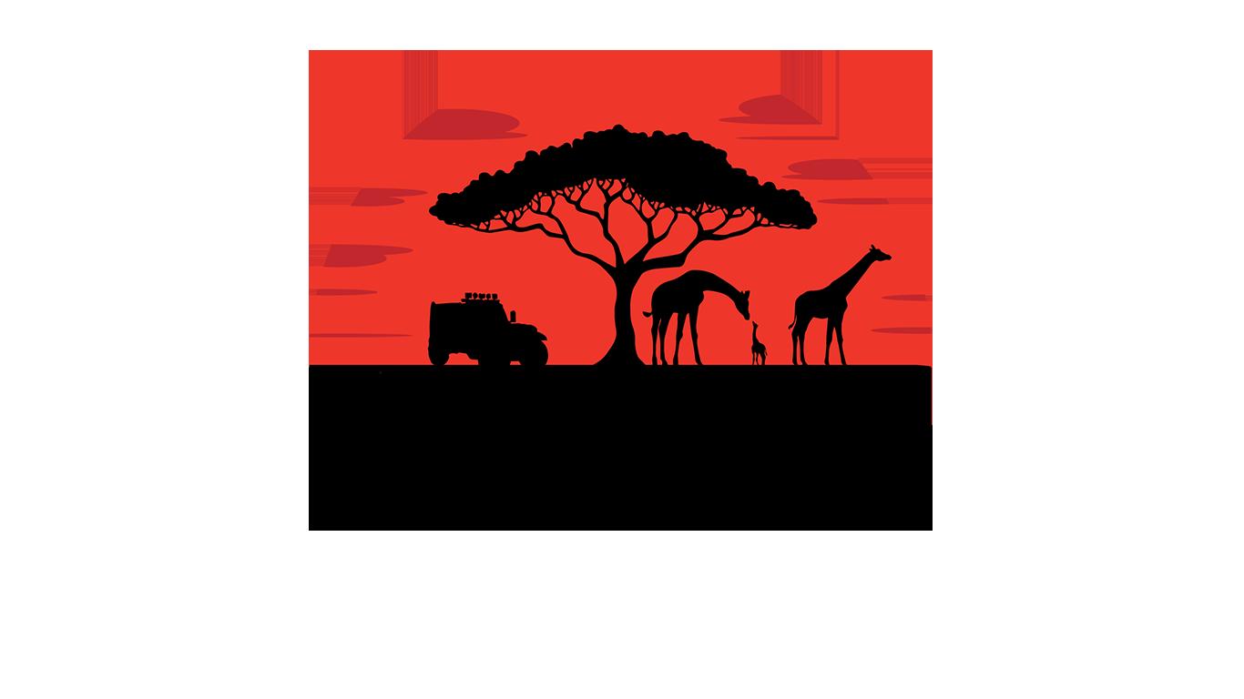 Zuid Afrika Camper